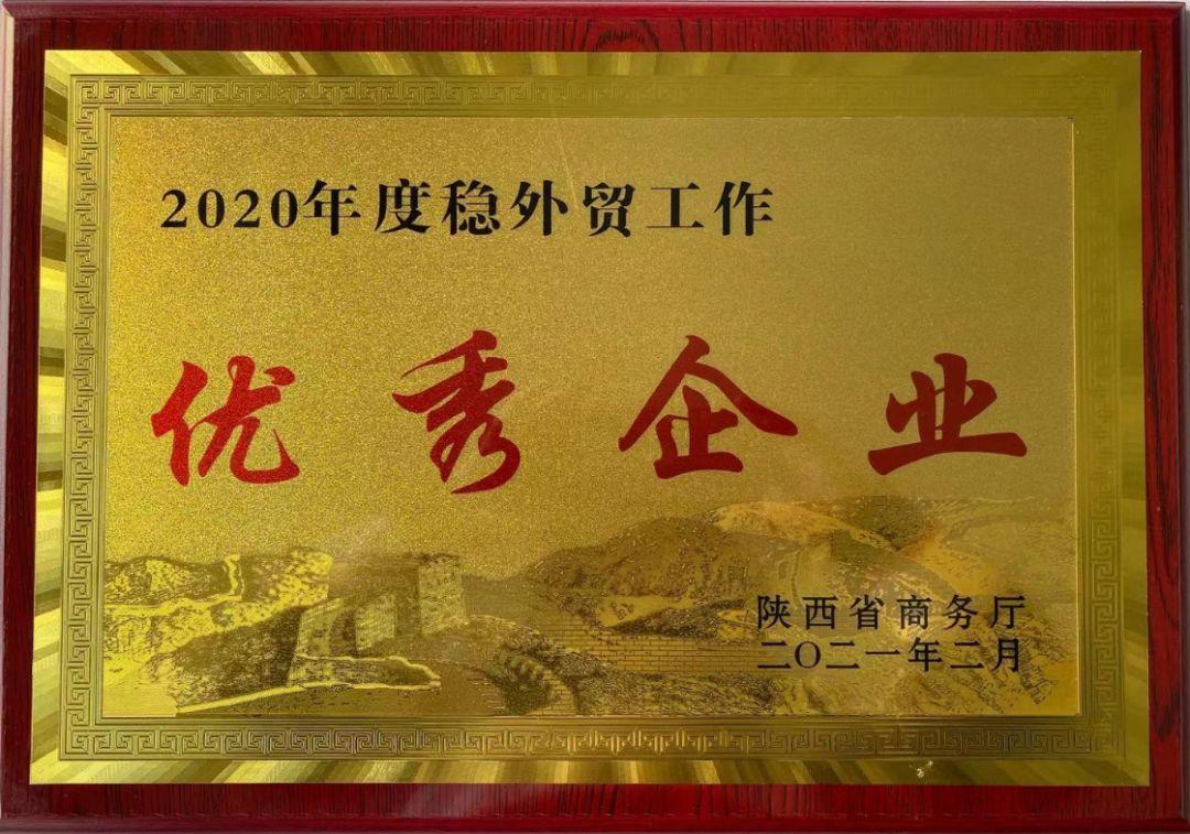 """华邦健康控股子公司——汉江药业荣获陕西省2020年度""""两稳一促""""优秀企业"""